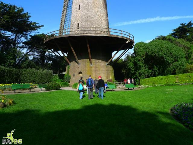 First tour stop .. windmill at Golden Gate Park