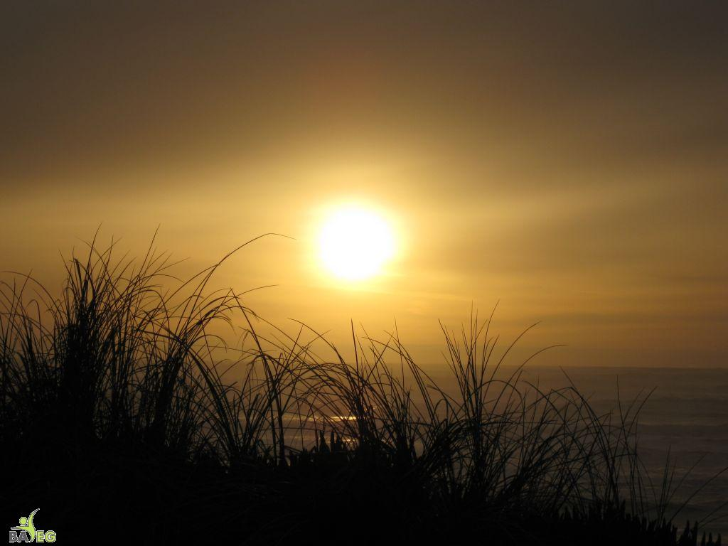Great ending to a wonderful hike and lunch .. sunset over the ocean on the way home