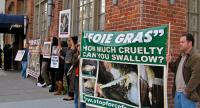 Napa:  Stand up for Ducks and Against Foie Gras!