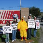 Protesting the inhumane treatment of 750,000,000 chickens slaughtered for KFCs.