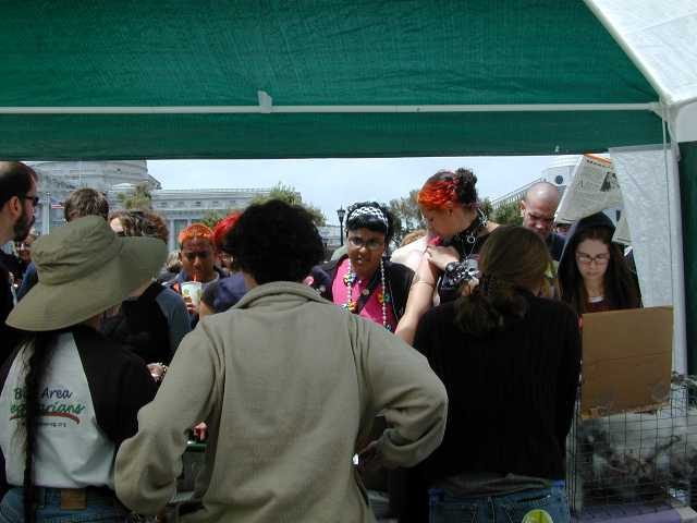 BAV's VegPride volunteers are faced with lots of interested folks!