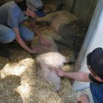 Hazel & Patty