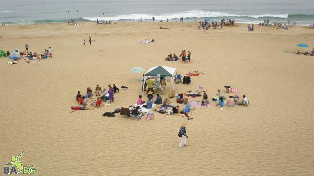 BAVeg friends & guests at Sand-n-Surf picnic, Montara State Beach